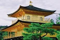 日本本州东瀛风情6天之旅