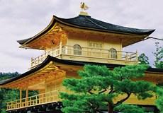 日本本州 东瀛风情6天之旅(东京进大阪出)