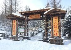 爆款-【至尊VIP】哈爾濱、虎峰嶺、雪鄉、亞布力雙飛6日游
