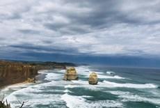 海陸空-澳大利亞·新西蘭(北島)海豚島11日