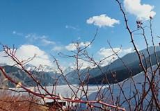 【乐游西北壹品伊犁】 巴薰衣草基地、天山天池、吐鲁番双飞8日游