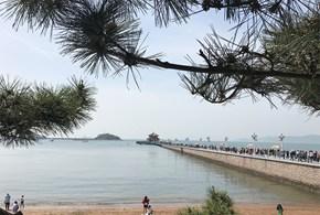 早安山東-【青煙港韻】 連云港、日照、青島、威海、蓬萊、煙臺雙飛6日游
