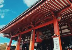 環遊日本-本州三古都&琵琶湖深度全景經典8日